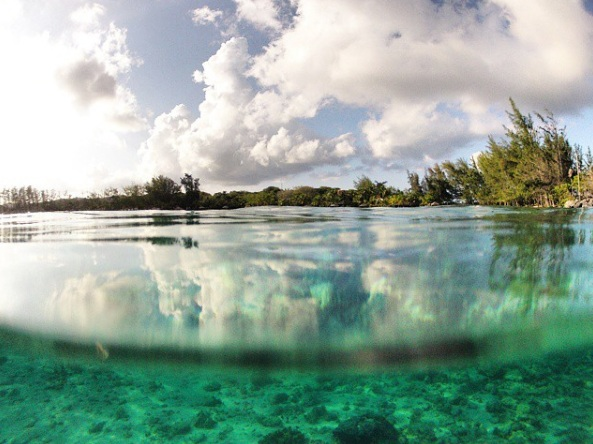 Crystal clear shallow waters